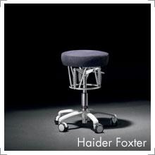 Haider Foxter bei Riemenschneider Wiesbaden