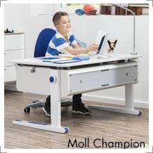 Kinderschreibtisch Moll Champion bei Riemenschneider Wiesbaden