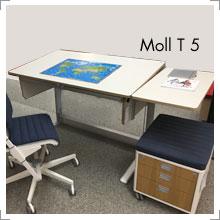 Moll T 5 Kinderschreibtisch mit Seitenplatte bei Riemenschneider Wiesbaden