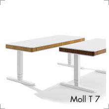 Moll T 7 bei Riemenschneider Wiesbaden